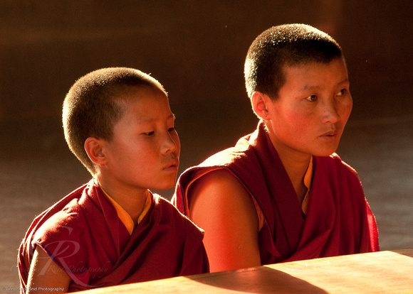 Young Nepalese Monks